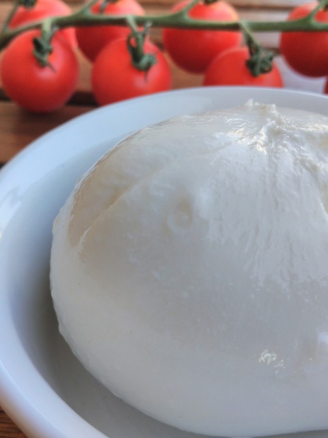 Buratta Cheese